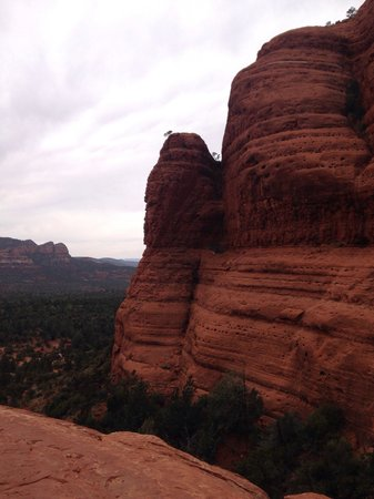 Sedona Red Rock Tours: View from Chicken Point on the Broken Arrow Pink Jeep tour