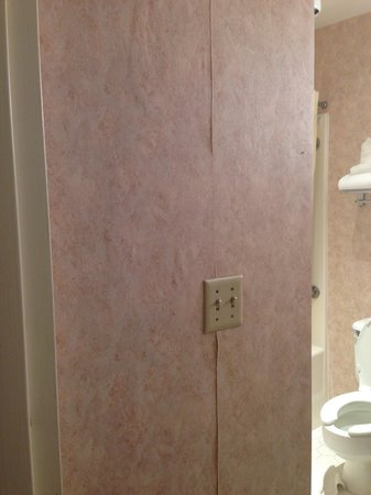 Somerset Hills Hotel: Bathroom wallpaper peeling