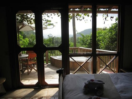 Ian Anderson's Caves Branch Jungle Lodge: View from our upstairs room