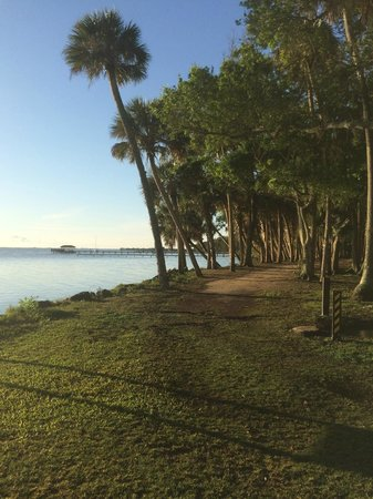 Manatee Hammock Campground: Riverfront view