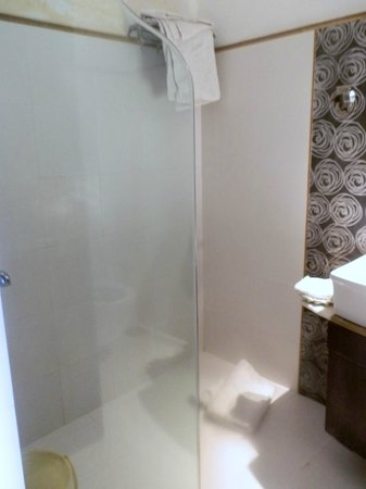 Hotel Mahendra Prakash: Bathroom walk in shower