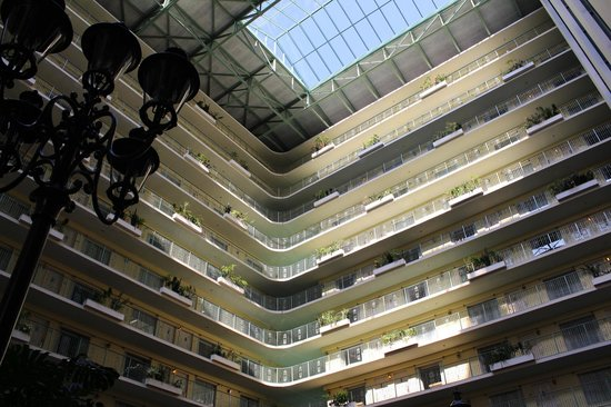 Embassy Suites by Hilton Fort Lauderdale 17th Street: Looking up!