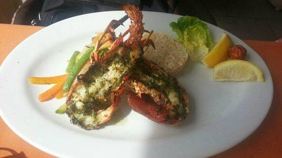 Restaurant Camel's : Fresh whole lobster £12