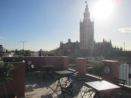 Grand Luxe Hostel: Vistas desde la terraza