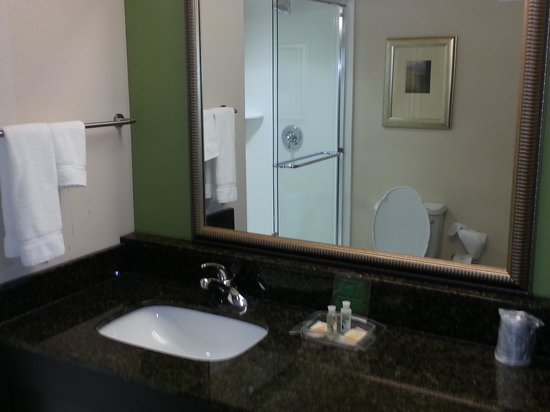 Holiday Inn & Suites Atlanta Airport - North: Bathroom