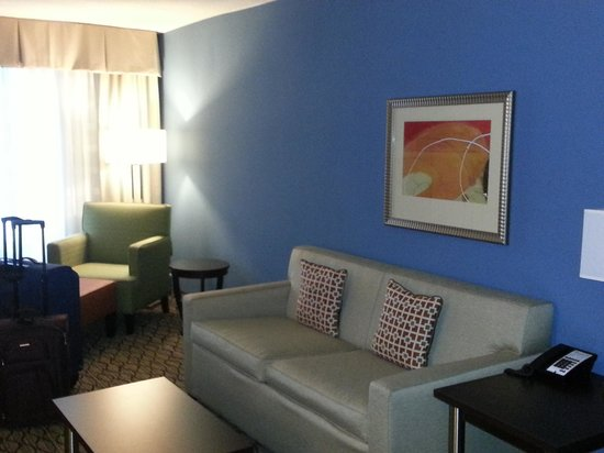 Holiday Inn & Suites Atlanta Airport - North: Living room area