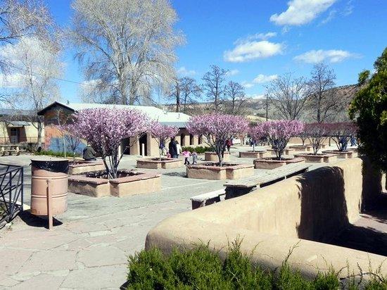 El Santuario de Chimayo : Courtyard