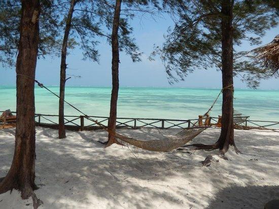 Queen of Sheba Beach Hotel: Hammock by the beach near the restaraunt