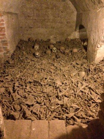 Monastery of Santo Domingo (Iglesia y Monasterio de Santo Domingo): Deu um pouco de medo....sqn