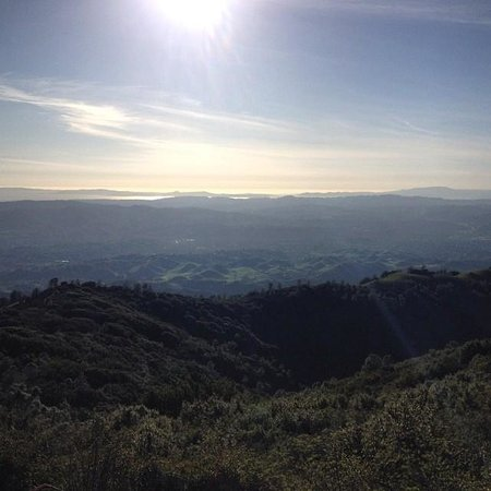 Mount Diablo State Park: 100% All Natural