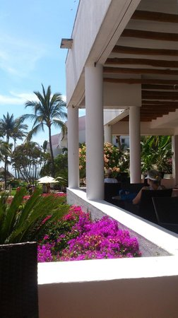 Marival Resort & Suites : View from our fave lobby bar