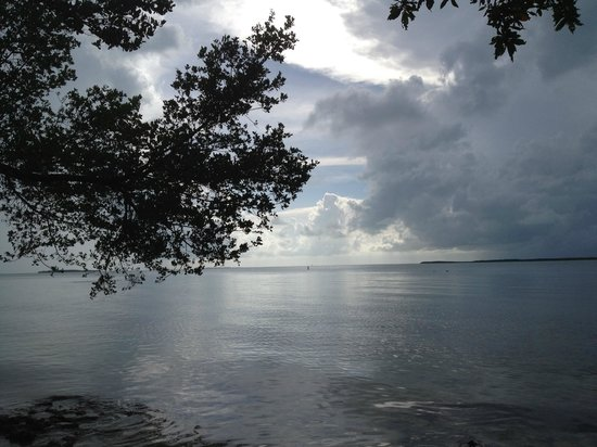 Hilton Key Largo Resort: View from the beach