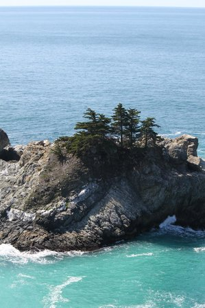 McWay Falls : View of the cove