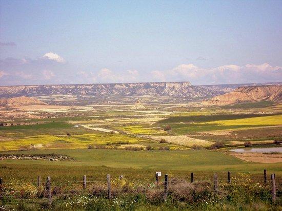 Parque Natural Bardenas Reales de Navarra: Vista de una amplia zona de Las Barbenas Reales.