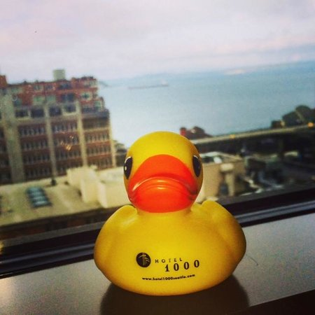 Loews Hotel 1000, Seattle : Buddy in the room