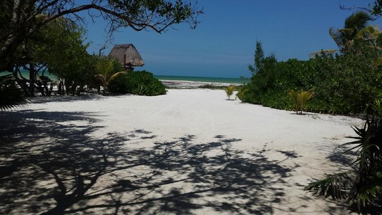 Casa Takywara: The beace beckons: A view from the garden