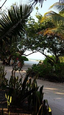 Casa Takywara: View from room