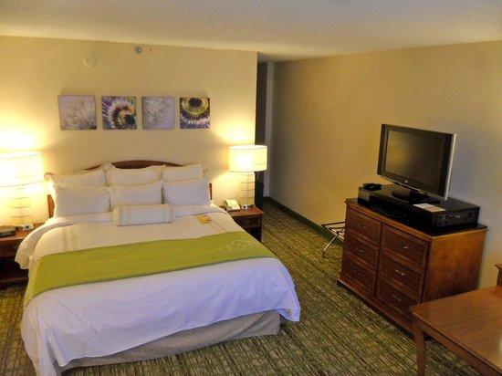 Huntsville Marriott at the Space & Rocket Center: King bedroom