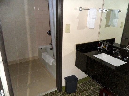 Huntsville Marriott at the Space & Rocket Center: Bathroom area