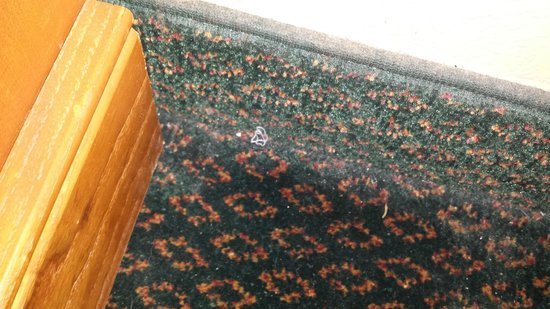 Travelodge Battle Creek: Carpets unclean