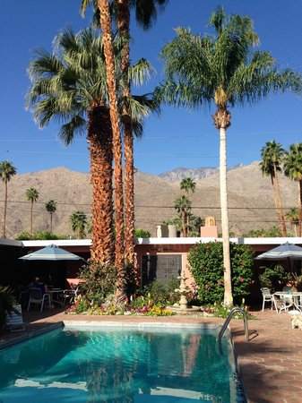 Villa Rosa Inn: oasis