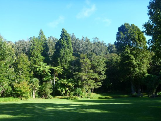 Bushland Park Lodge & Retreat: View of the grounds