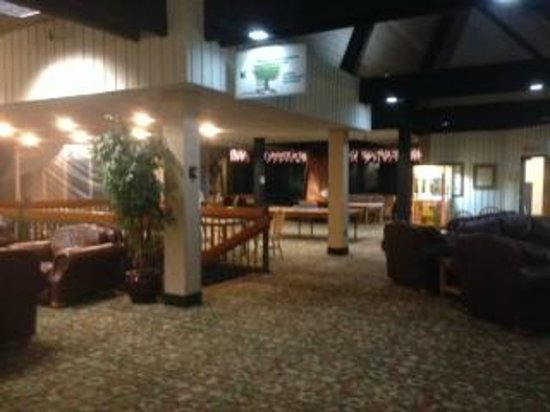 Mohican Lodge and Conference Center: Common area