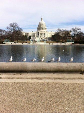 Capitol Hill: Vista externa do Capitólio, com lago à frente