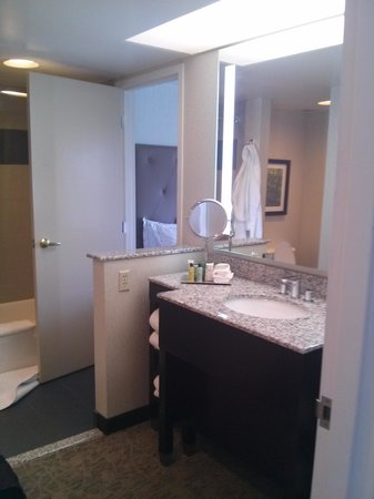 Hilton Auburn Hills Suites : Bathroom