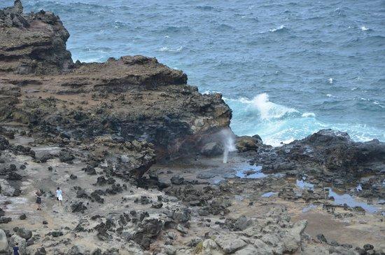 Nakalele Blowhole: The Blowhole on Maui  March 2014