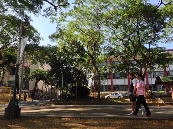 University of the Philippines : Early Jogging