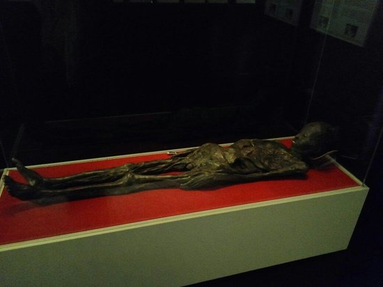 Archaeological Museum and Andautonia Archaeological Park: Very well preserved mummy