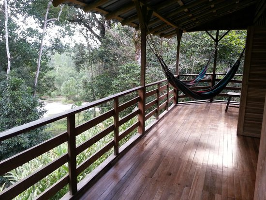 Selva Bananito Lodge: Vista desde la cabaña