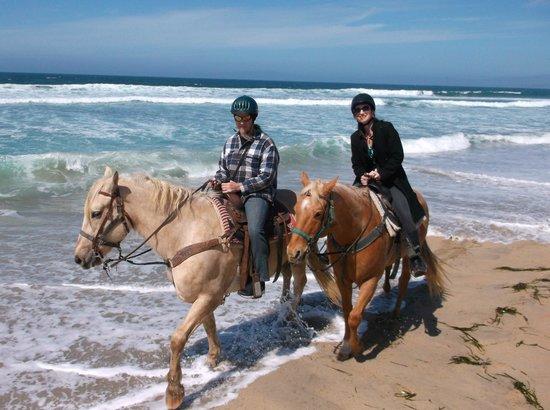 Monterey Bay Equestrian Center: Honey on the left, Dakota on the right