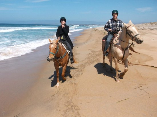 Monterey Bay Equestrian Center: surf line at Salinas Beach