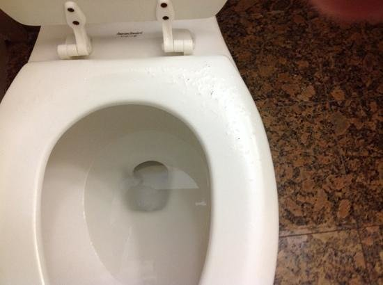 Quality Inn & Suites On The Beach : Toilet seat paint peeling, wonder if germs could hide here??