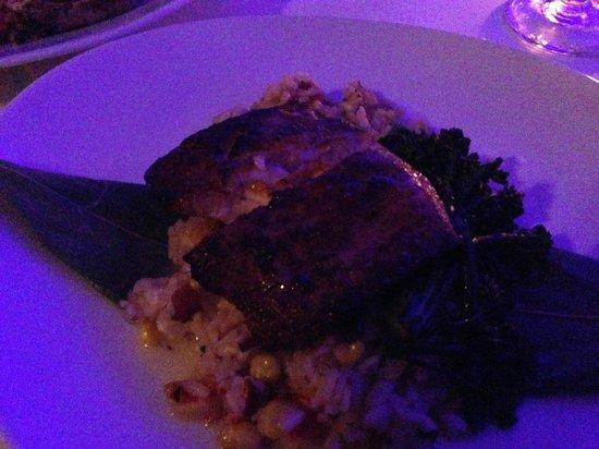 Blue Moon Fish Company : Blacked Mahi over Maine Lobster Risotto
