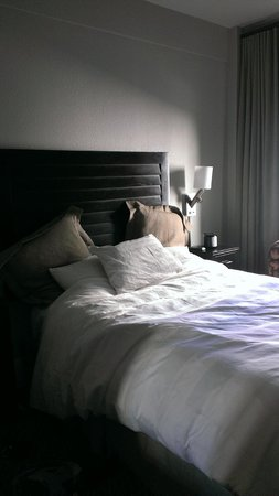 The Sofia Hotel : Comfy bed, just a little tight in the room overall :/
