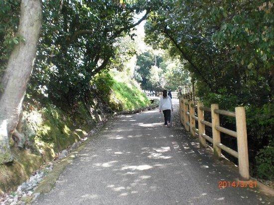 Matsuyama Castle Ninomaru Historical Garden: sakamiti