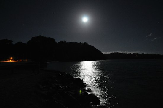 Whangateau Holiday Park: Night shot of Moon looking east of park