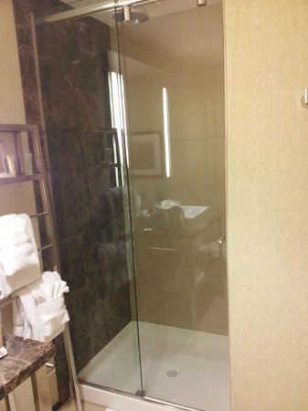 Moonrise Hotel: Shower