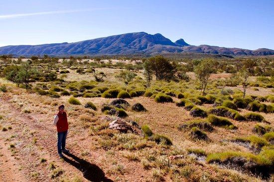 Mount Sonder: Mt sonder in the distance