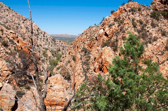 Mount Sonder: Half way up