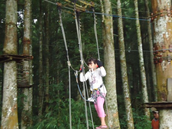 Bali Treetop Adventure Park: Even 6 year olds can do it!