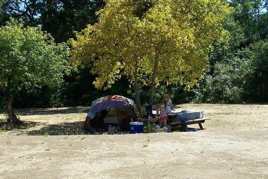 Skyline Wilderness Park : Our campsite.