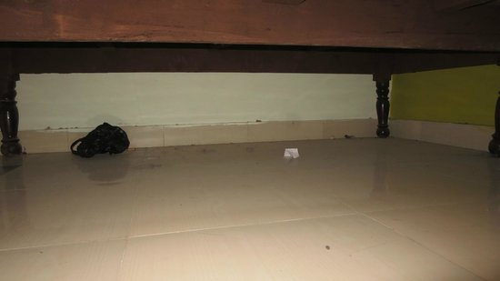 Hotel Satkar: Dirt under my bed.