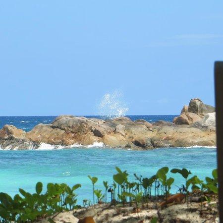 Petite Anse Kerlan : Gli scogli