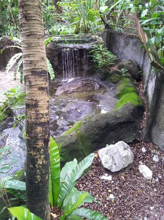 Sunway Lagoon : Tranquil part of the park
