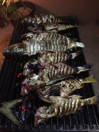 Summer Villa Guest House : Grilled Fish