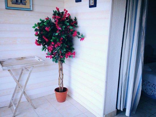 Hotel Cap Riviera: Depuis le petit patio
